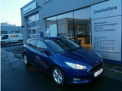 Ford Focus 1 EcoBoost Trend - Autos Ford - Bild 1