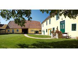Domblick - 200m² Wohnung - 40m² Terrasse in Wiener Neustadt auf ...